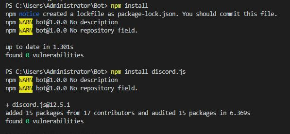 Package.json and discord.js installation